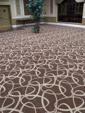 Commercial Carpet Cleaning in Boca Raton, FL (2)